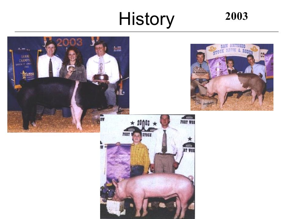 History 1990's 1991 2001