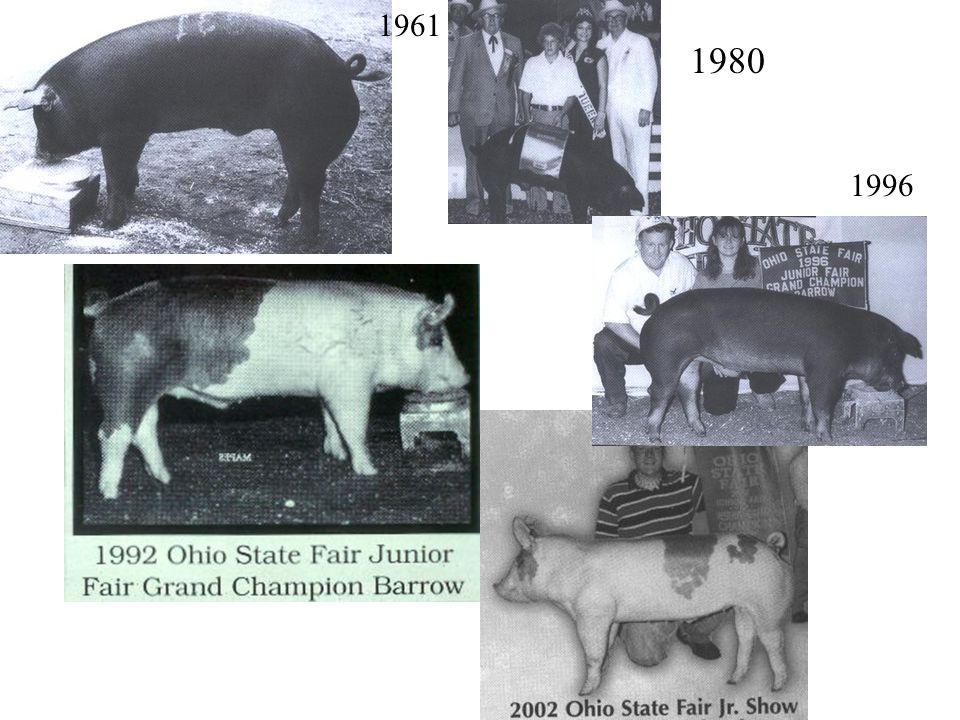 History 1960's 35 years of change