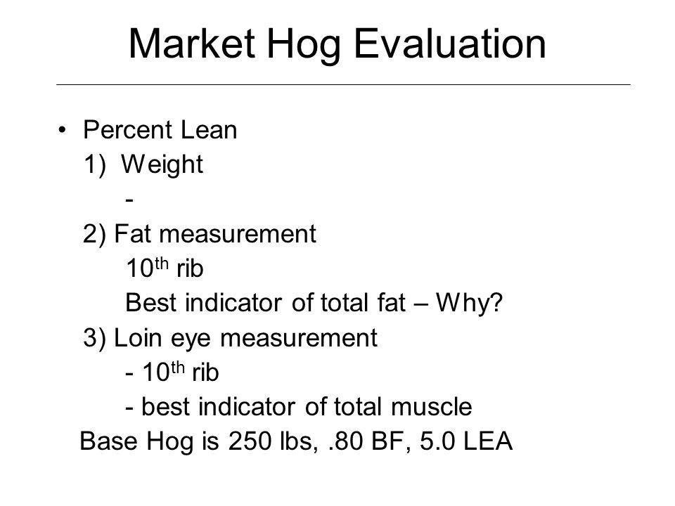 Visual Indicators of Muscle/Lean