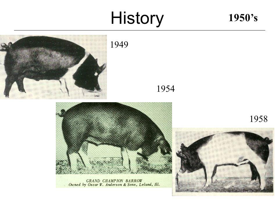History 1967 1960's