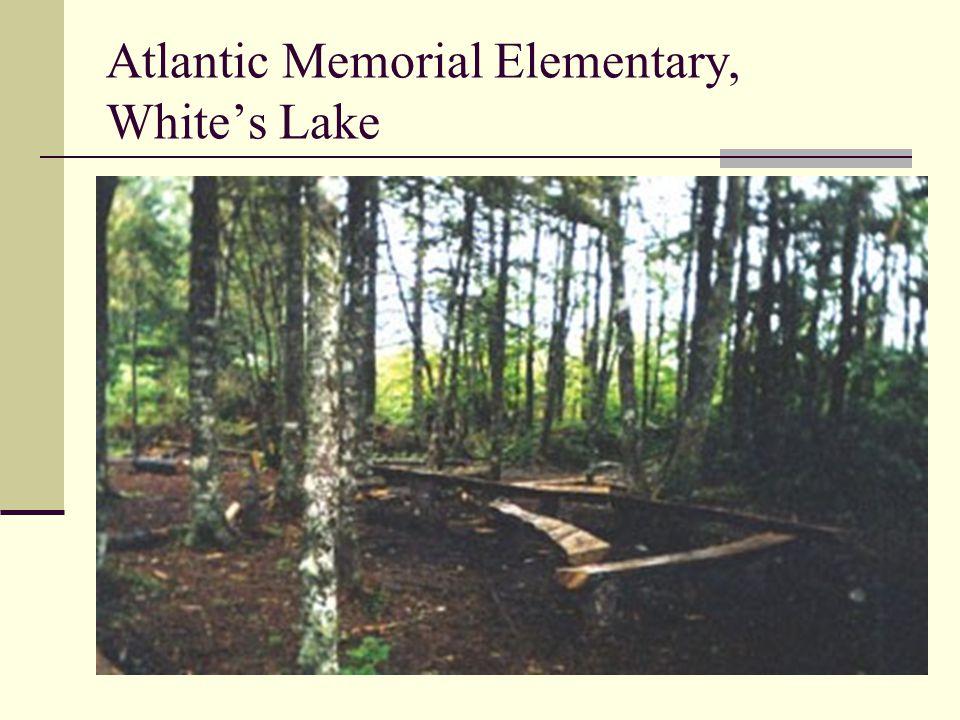 Atlantic Memorial Elementary, White's Lake