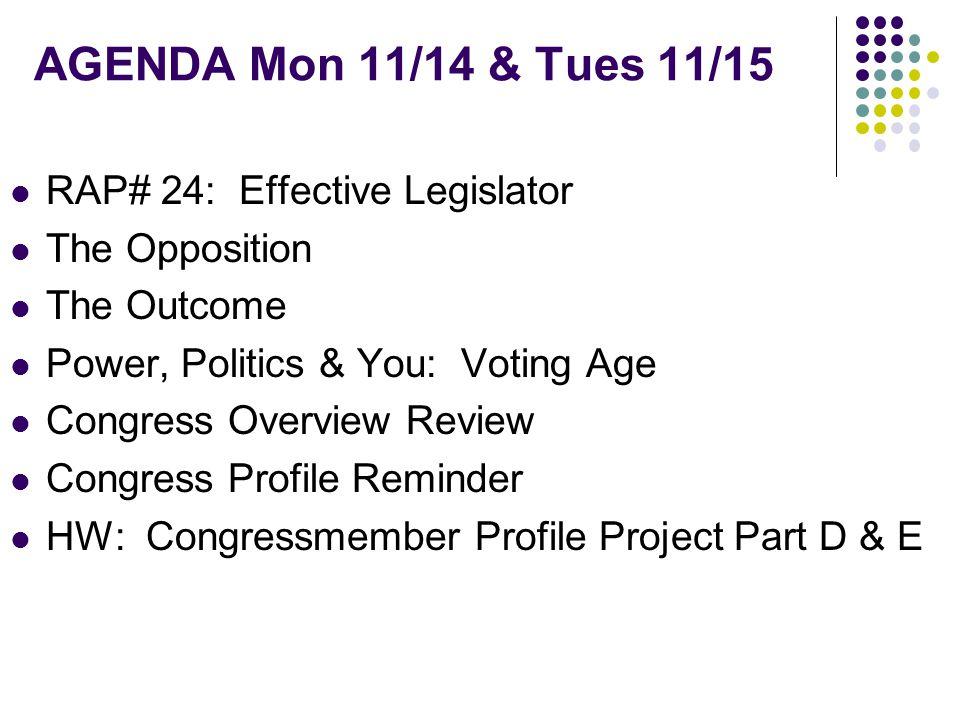 RAP #24: Effective Legislator Overall, do you think Joe Schwarz was an effective legislator.