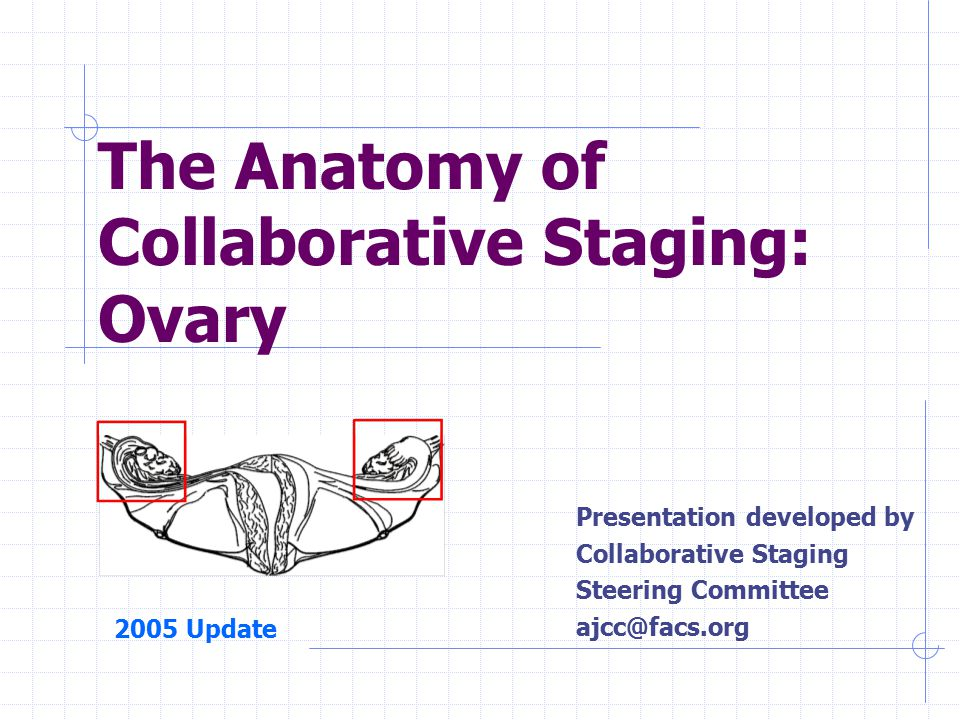 The Anatomy of Collaborative Staging: Ovary Presentation developed by Collaborative Staging Steering Committee ajcc@facs.org 2005 Update