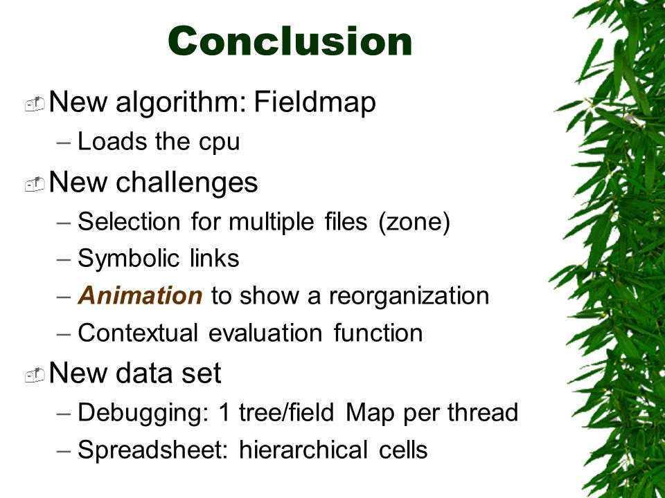Conclusion  New algorithm: Fieldmap –Loads the cpu  New challenges –Selection for multiple files (zone) –Symbolic links –Animation to show a reorgan