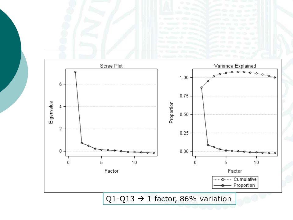 Q1-Q13  1 factor, 86% variation