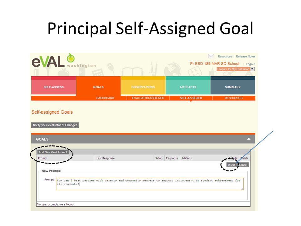 Principal Self-Assigned Goal