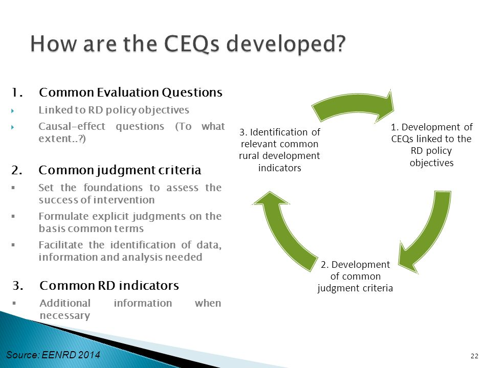 1. Common Evaluation Questions  Linked to RD policy objectives  Causal-effect questions (To what extent..?) 22 2.Common judgment criteria  Set the