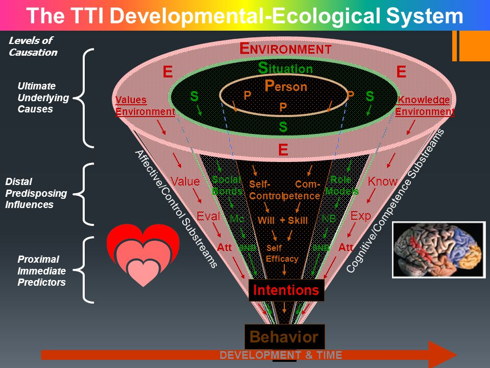 The TTI Developmental-Ecological System P SS S E P Eval Behavior SNBSelf Efficacy Att Intentions Will + Skill Exp McNB KnowValue Social Bonds Role Models Self- Control Com- petence SNB Values Environment Knowledge Environment E NVIRONMENT S ituation P erson EE Affective/Control Substreams Cognitive/Competence Substreams DEVELOPMENT & TIME Ultimate Underlying Causes Levels of Causation Distal Predisposing Influences Proximal Immediate Predictors