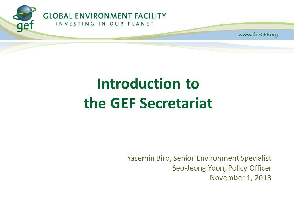 GEF Secretariat (GEFSEC) manages the operation of GEF Trust Fund LDCF Fund SCCF Fund NPI Fund GEFSEC GEF A SSEMBLY & C OUNCIL I NTERNATIONAL C ONVENTIONS EX.