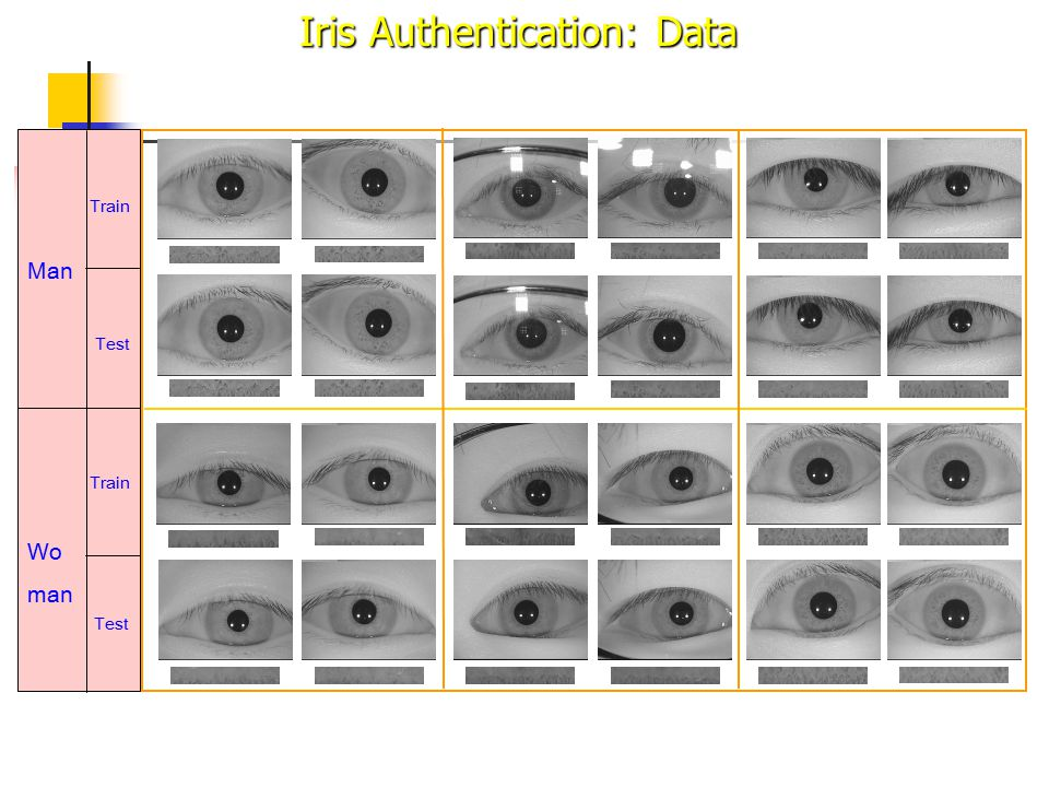 Man Wo man Train Test Train Test Left Right Iris Authentication: Data