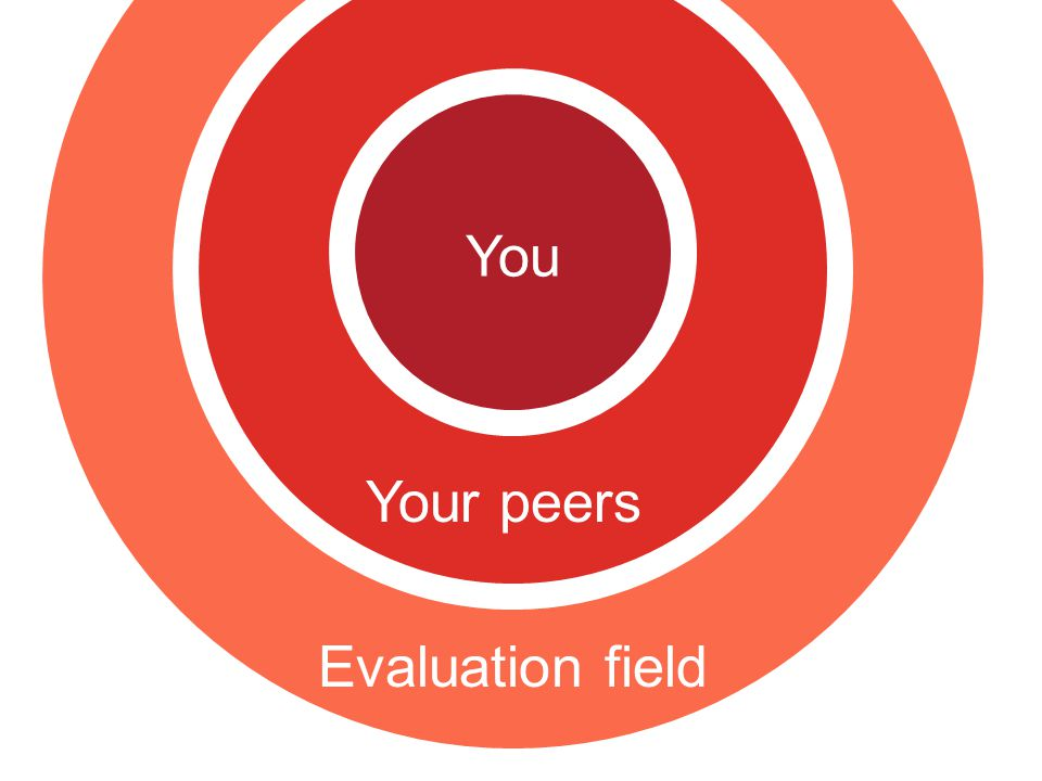 You Your peers Evaluation field