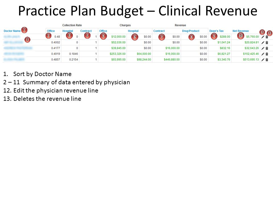 Practice Plan Budget – Clinical Revenue 1.Sort by Doctor Name 2 – 11 Summary of data entered by physician 12.