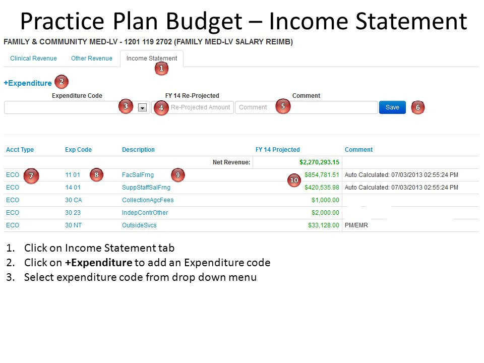 Practice Plan Budget – Income Statement 1.Click on Income Statement tab 2.Click on +Expenditure to add an Expenditure code 3.Select expenditure code from drop down menu