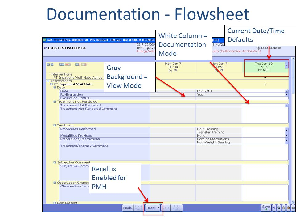 Documentation - Flowsheet Recall is Enabled for PMH Gray Background = View Mode White Column = Documentation Mode Current Date/Time Defaults