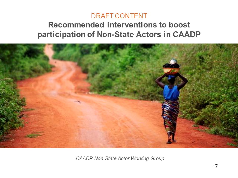 17 DRAFT CONTENT Recommended interventions to boost participation of Non-State Actors in CAADP CAADP Non-State Actor Working Group