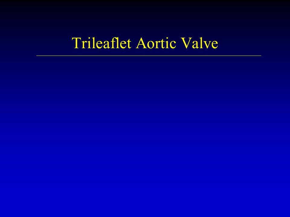 Trileaflet Aortic Valve