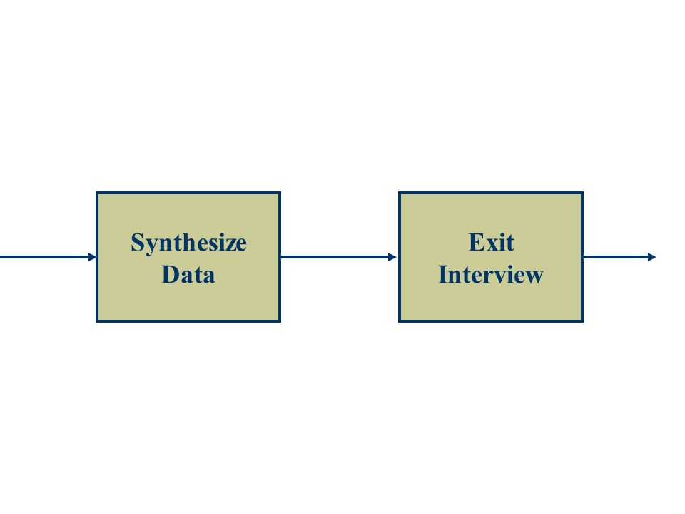 Synthesize Data Exit Interview
