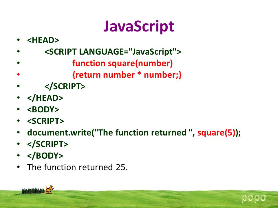 JavaScript function square(number) {return number * number;} document.write(