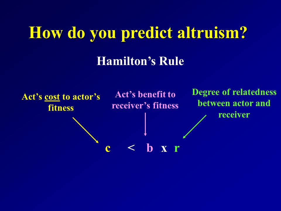 How do you predict altruism.