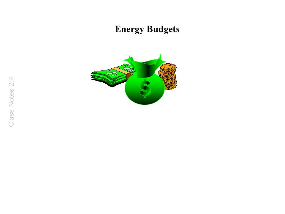 Energy Budgets Class Notes 2:4
