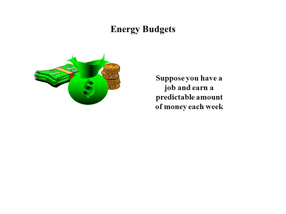 Suppose you have a job and earn a predictable amount of money each week Energy Budgets
