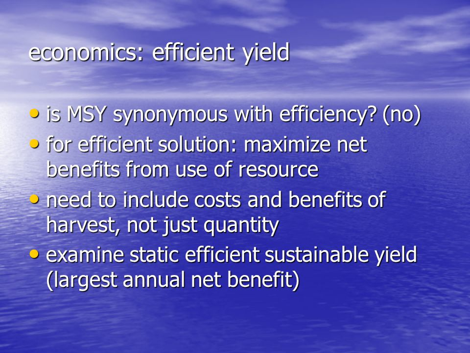 economics: efficient yield is MSY synonymous with efficiency.