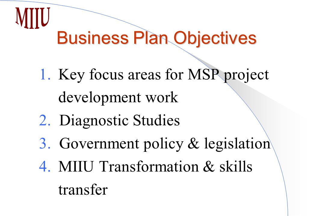 Business Plan Objectives 1.Key focus areas for MSP project development work 2.