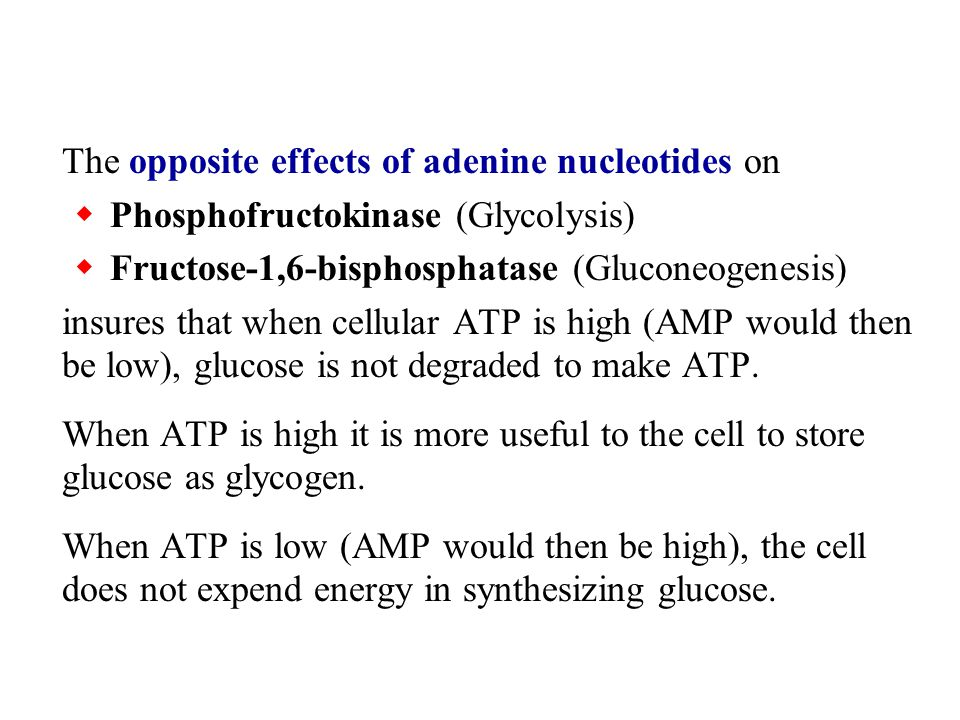The opposite effects of adenine nucleotides on  Phosphofructokinase (Glycolysis)  Fructose-1,6-bisphosphatase (Gluconeogenesis) insures that when ce