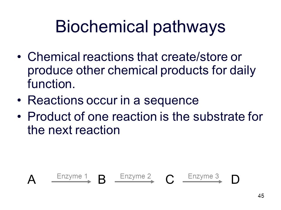 45 Biochemical pathways Chemical reactions that create/store or produce other chemical products for daily function. Reactions occur in a sequence Prod