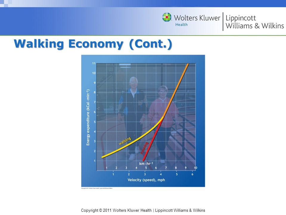Copyright © 2011 Wolters Kluwer Health | Lippincott Williams & Wilkins Walking Economy (Cont.)