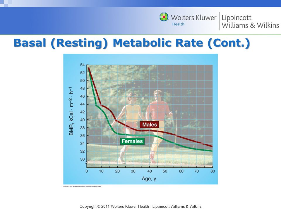 Copyright © 2011 Wolters Kluwer Health | Lippincott Williams & Wilkins Estimating Resting Daily Energy Expenditure Metabolic rate/hour = BMR x surface area (BSA)