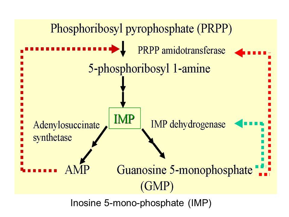 Inosine 5-mono-phosphate (IMP)