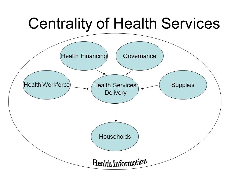 Centrality of Health Services Health Services Delivery Households GovernanceHealth Financing Health Workforce Supplies