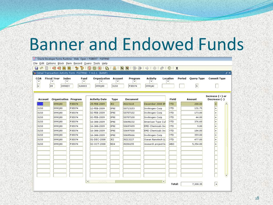 Banner and Endowed Funds 18