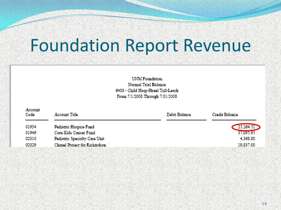 Foundation Report Revenue 24