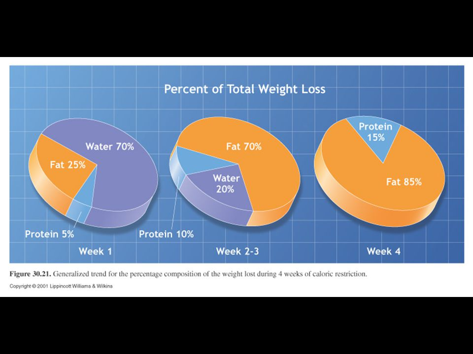 Food and Weight Loss The most important factor is the total number of calories consumed Carbohydrates and protein consumed in excess of the body's need will result in the excess being stored as fat.