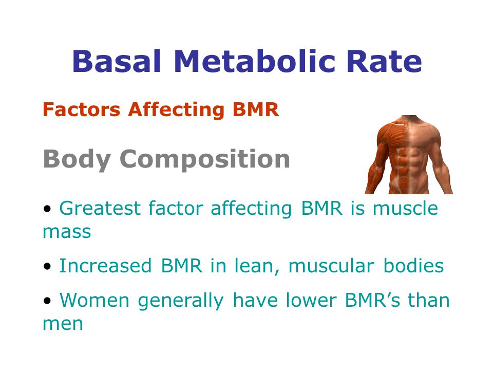 Factors Affecting BMR Body Composition Greatest factor affecting BMR is muscle mass Increased BMR in lean, muscular bodies Women generally have lower BMR's than men Basal Metabolic Rate