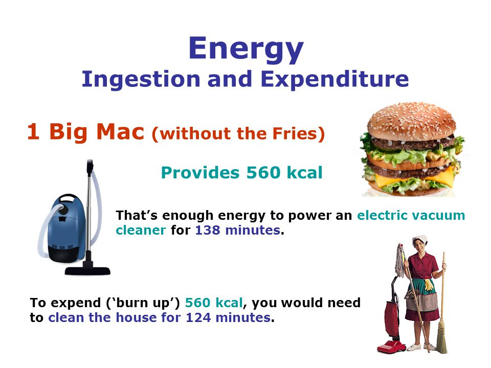 Energy Ingestion and Expenditure 1 Big Mac (without the Fries) Provides 560 kcal To expend ('burn up') 560 kcal, you would need to clean the house for