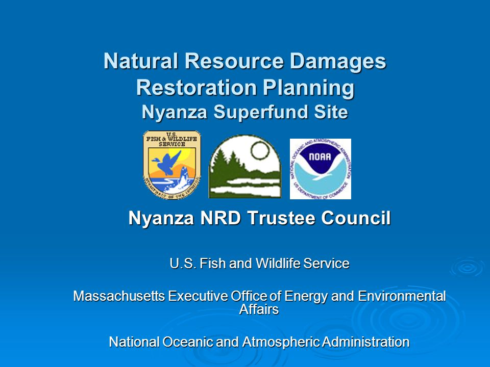 Nyanza NRD Restoration Plan  To submit restoration project ideas: Use NRD Assessment Restoration Project Information Sheet Use NRD Assessment Restoration Project Information Sheet OrganizationOrganization Restoration ActivityRestoration Activity Project StatusProject Status Restoration Description and BenefitsRestoration Description and Benefits Project PartnershipsProject Partnerships Consider carefully Trustee Project Selection Criteria (see handout) Consider carefully Trustee Project Selection Criteria (see handout)