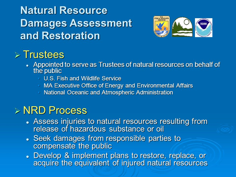 Nyanza NRD Restoration Plan  Eligibility Criteria Restore, replace, and/or acquire the equivalent of natural resources or natural resource services injured by the release of mercury or other hazardous substances from the Nyanza Superfund Site Restore, replace, and/or acquire the equivalent of natural resources or natural resource services injured by the release of mercury or other hazardous substances from the Nyanza Superfund Site In terms of cost, not limit ability of Trustees to expend funds that 1) accomplish Trustee restoration goals and 2) achieve restoration benefits over a wide geographic area In terms of cost, not limit ability of Trustees to expend funds that 1) accomplish Trustee restoration goals and 2) achieve restoration benefits over a wide geographic area Be consistent w/ federal, state or local law, regulation or policy Be consistent w/ federal, state or local law, regulation or policy Not be an action required under other federal, state, or local law Not be an action required under other federal, state, or local law Not be inconsistent with any ongoing or anticipated remedial actions (i.e., primary restoration) in the Sudbury River Not be inconsistent with any ongoing or anticipated remedial actions (i.e., primary restoration) in the Sudbury River