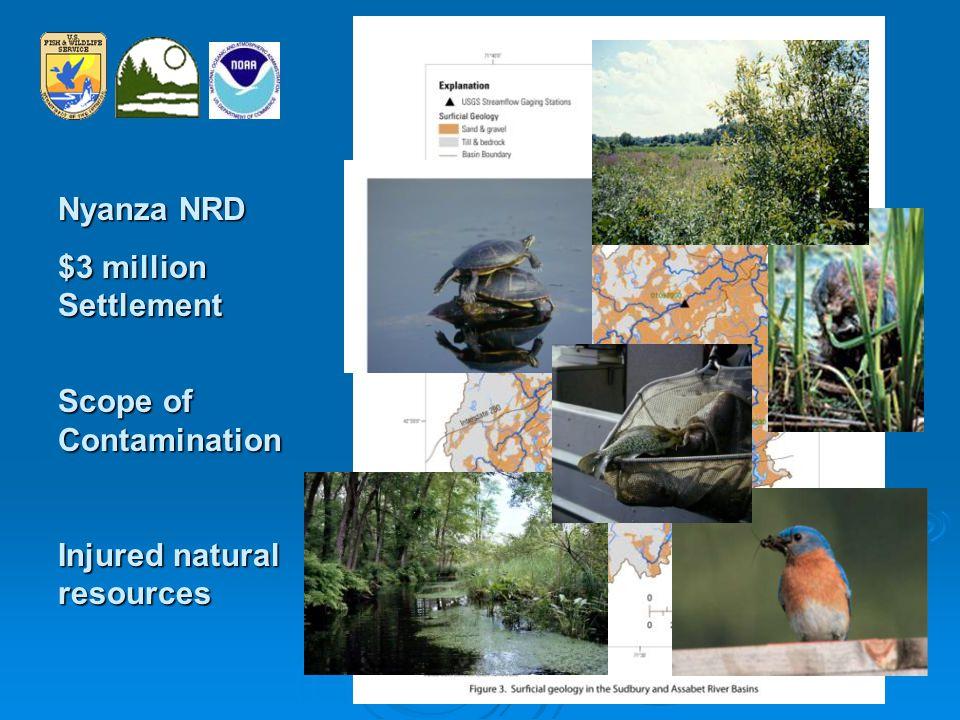 NRD Restoration Examples Wetland Restoration Wetland Enhancement Mill Creek, ChelseaLonsdale Drive-In, RI
