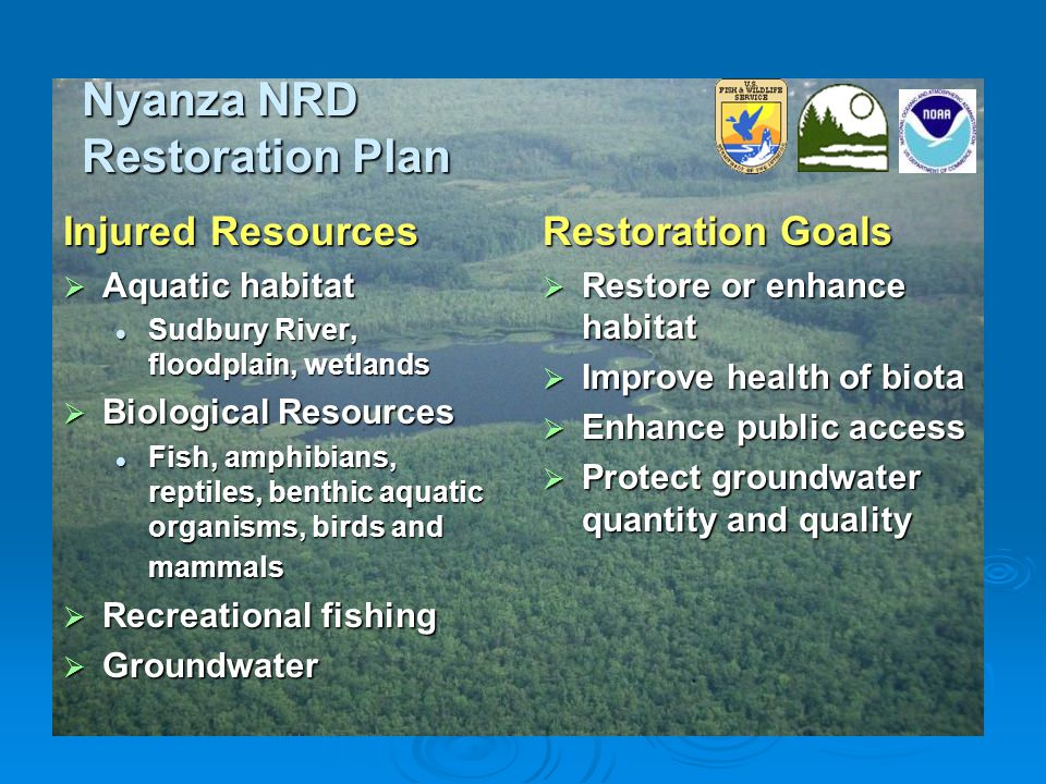 Nyanza NRD Restoration Plan Injured Resources  Aquatic habitat Sudbury River, floodplain, wetlands Sudbury River, floodplain, wetlands  Biological Resources Fish, amphibians, reptiles, benthic aquatic organisms, birds and mammals Fish, amphibians, reptiles, benthic aquatic organisms, birds and mammals  Recreational fishing  Groundwater Restoration Goals  Restore or enhance habitat  Improve health of biota  Enhance public access  Protect groundwater quantity and quality