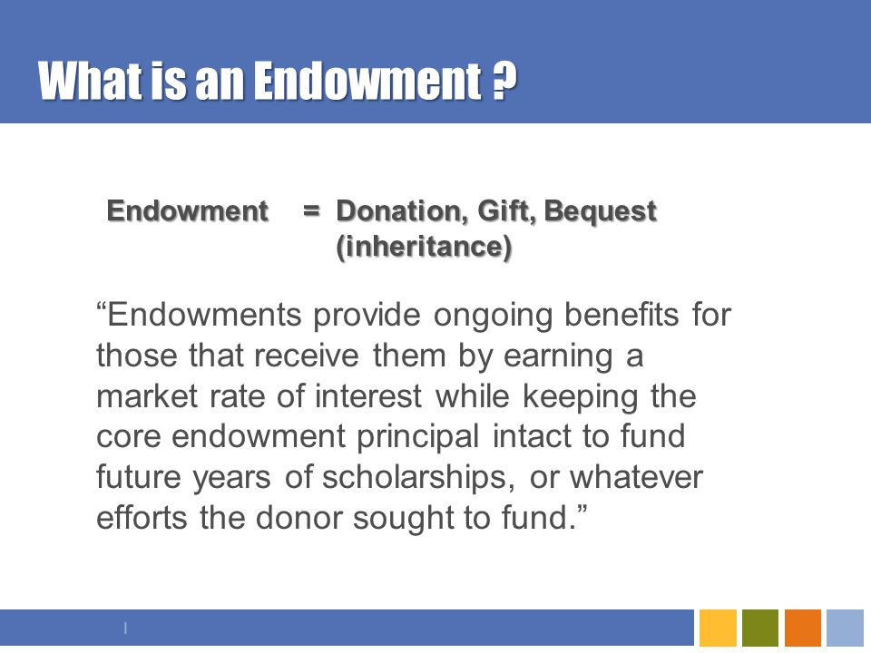 I What is an Endowment .