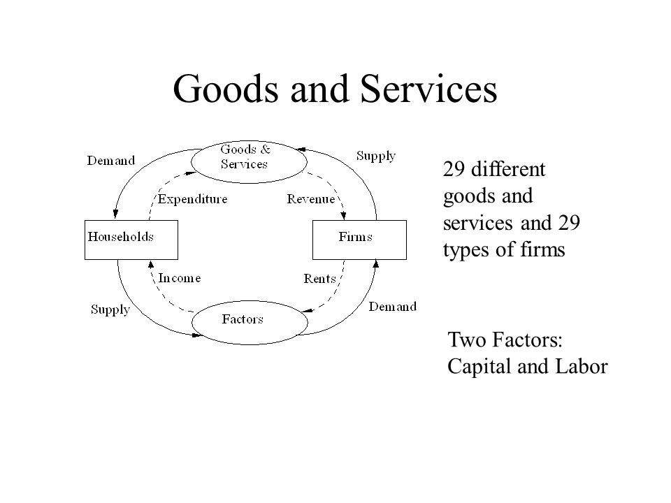 Goods and Services 29 different goods and services and 29 types of firms Two Factors: Capital and Labor