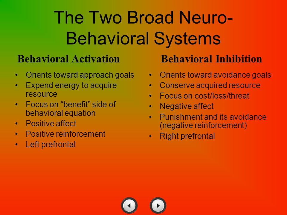 "The Two Broad Neuro- Behavioral Systems Orients toward approach goals Expend energy to acquire resource Focus on ""benefit"" side of behavioral equation"