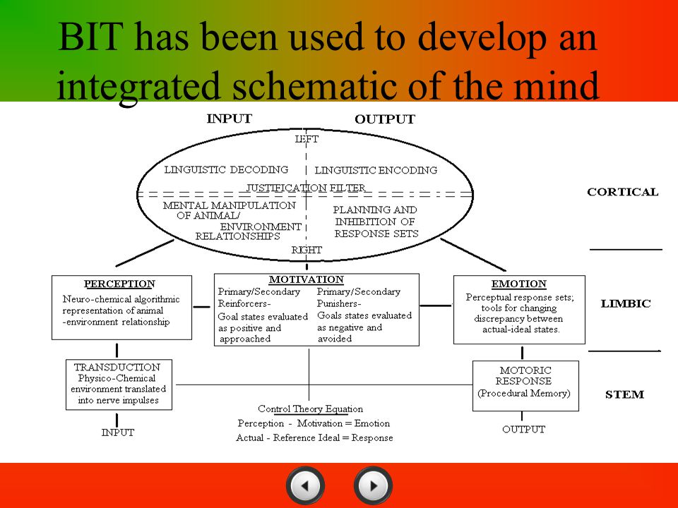 BIT has been used to develop an integrated schematic of the mind