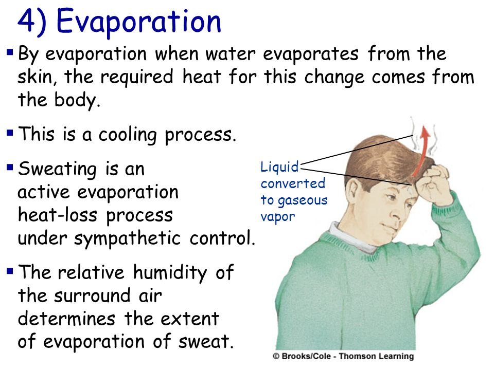  By evaporation when water evaporates from the skin, the required heat for this change comes from the body.