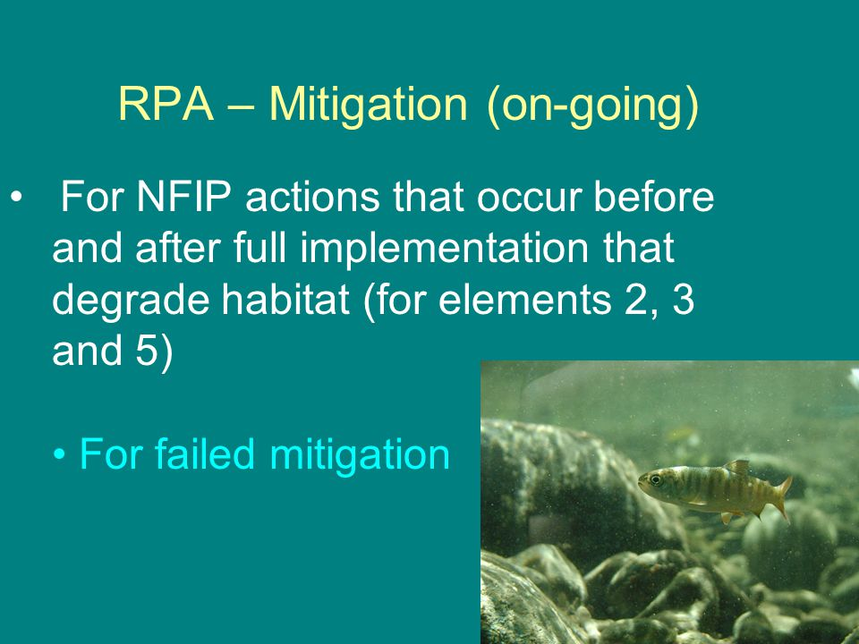 RPA – Mitigation (on-going) For NFIP actions that occur before and after full implementation that degrade habitat (for elements 2, 3 and 5) For failed mitigation