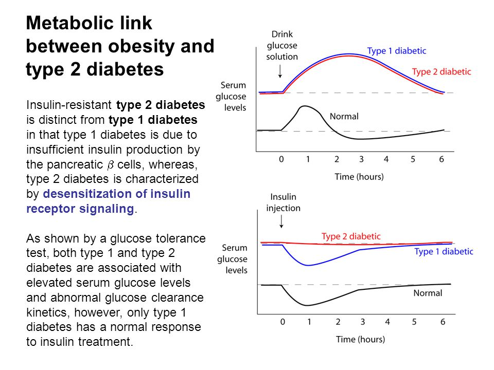 Metabolic link between obesity and type 2 diabetes Insulin-resistant type 2 diabetes is distinct from type 1 diabetes in that type 1 diabetes is due to insufficient insulin production by the pancreatic  cells, whereas, type 2 diabetes is characterized by desensitization of insulin receptor signaling.