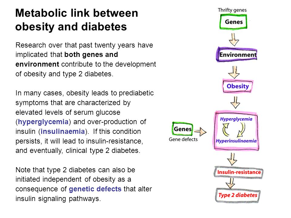 Research over that past twenty years have implicated that both genes and environment contribute to the development of obesity and type 2 diabetes.